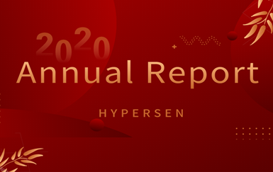 Annual Report 2020 | Hypersen
